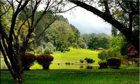 taman bunga  romantis cocok dikunjungi bersama