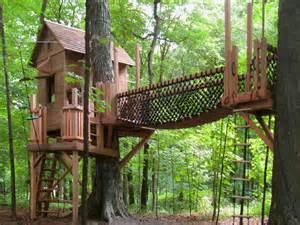 Kids Tree House Design