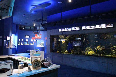 沼津 深海 水族館
