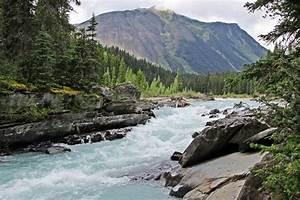 Cougar Annonce : alpine trails ch east kootenay ~ Gottalentnigeria.com Avis de Voitures