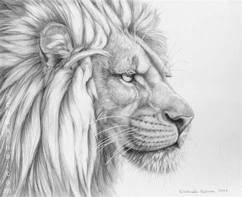 Lion's Mane By Sschukina On Deviantart