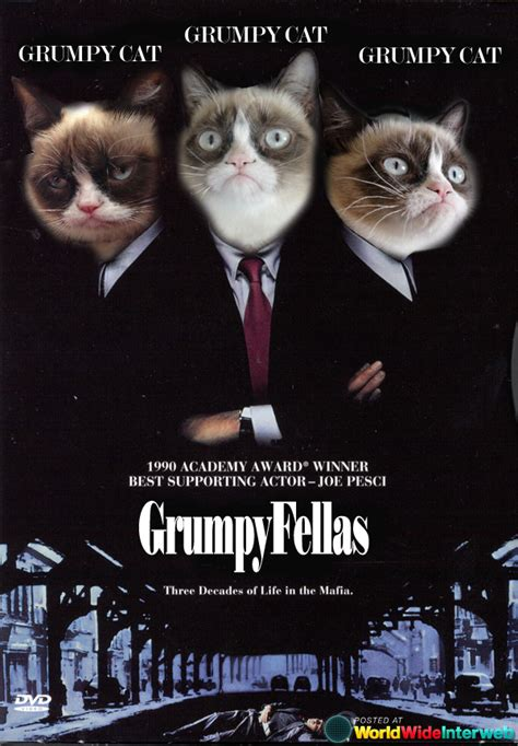 Possible Grumpy Cat Movies (gallery) Worldwideinterweb