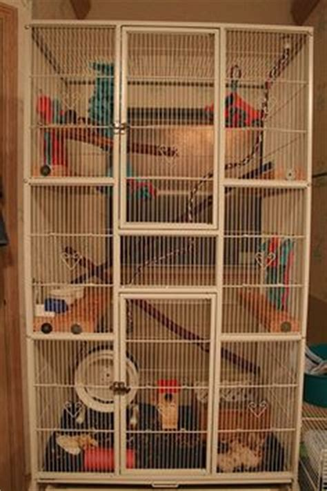 heres  tall wood  wire flying squirrel cage stuff