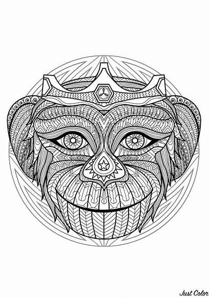 Mandala Monkey Head Coloring Patterns Mandalas Simple