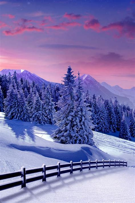 Free Winter Picture by Beautiful Pictures Wonderful Nature In Winter