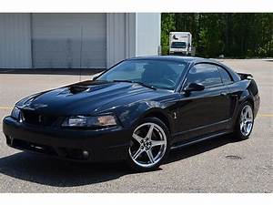 2001 Ford Mustang Svt Cobra Coupe 5 Speed Roush Stock Serviced Low Miles Reserve - Used Ford ...