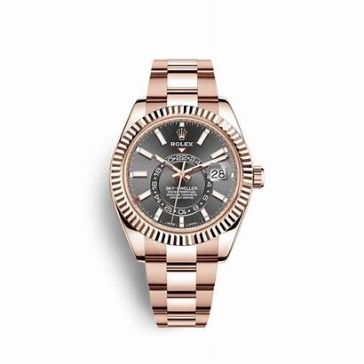 Rolex Watches Sky Gold Dweller Oyster Catalogue