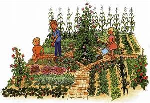 Plantes Amies Et Ennemies Au Potager : plan de potager au jardin forum de jardinage ~ Melissatoandfro.com Idées de Décoration