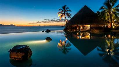 Sunset Pool Palm Bar Moon Trees Sea