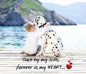 Cute Dog Owner Quotes. QuotesGram