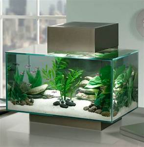 Deco Meuble Design : aquarium design id es originales de meubles aquarium ~ Teatrodelosmanantiales.com Idées de Décoration