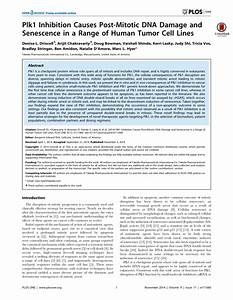 (PDF) Plk1 Inhibition Causes Post-Mitotic DNA Damage and ...