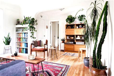 house plants easy home decor