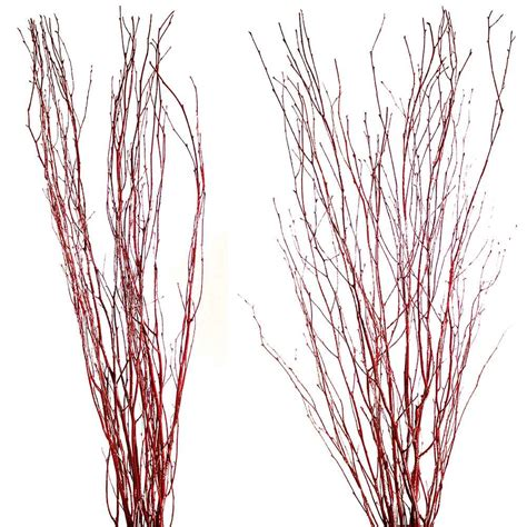 Decorative Branches  Red Birch Branches. Room Escape Nyc. White Decorative Tray. Dining Room Console. Mardi Gras Decor. Elegant House Decoration Ideas. Decorative Maps For Walls. Room For Rent In Glendale Ca. Movie Room Chairs