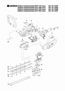 Wiring Diagram Motor Vario