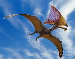 Tupandactylus Imperator, A Pterosaur Digital Art by Sergey