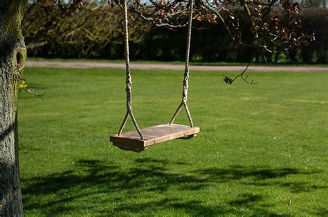 Adult Tree Swing