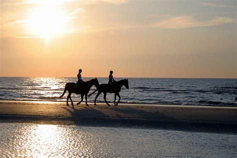 Urlaub Mit Eigenem Pferd Nordsee