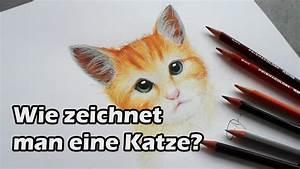 Wie Fange Ich Eine Katze : wie zeichnet man eine katze how to draw a cat f r tutorial untertitel einschalten youtube ~ Markanthonyermac.com Haus und Dekorationen