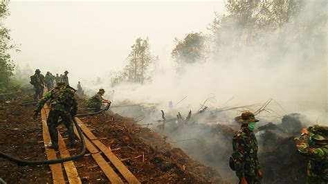 El Niño A Key Player In Severe Indonesia Fires Climate