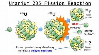 Let   s consider a nuc...Uranium Atom