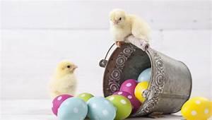 Einen Korb Bekommen Englisch : diversifikation warum sie zu ostern nicht alle eier in einen korb legen sollten erste ~ Orissabook.com Haus und Dekorationen