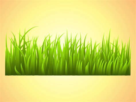 clipart vectors grass vector vector graphics freevector