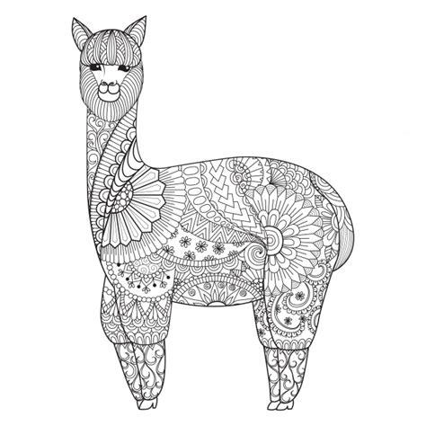 hand drawn llama background vector