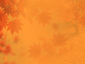 fall autumn  powerpoint template