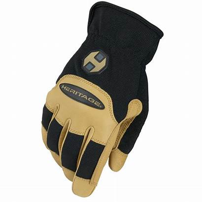 Glove Tan Gloves Stable Performance Heritage Riding