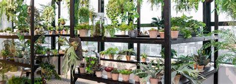 Wie Lange Halten Fertighäuser by Wie Lange Halten K 252 Nstliche Pflanzen Easyplants