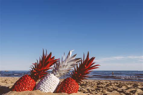 pineapple   middle   seashore  stock photo