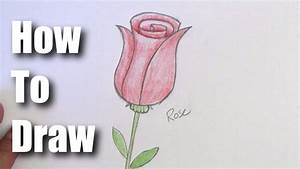 How To Draw A Rose - Easy Step by Step For Beginners - YouTube