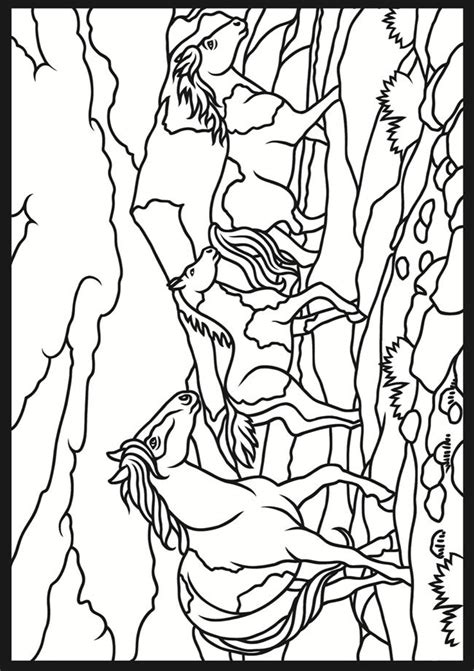 drawing images  pinterest anatomy children