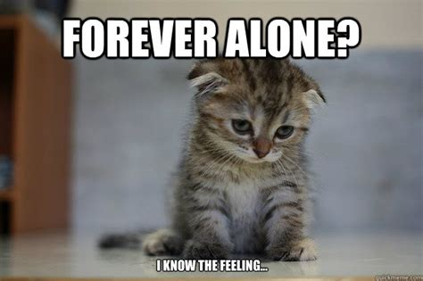 All Alone Meme - forever alone i know the feeling sad kitten quickmeme