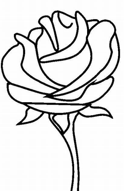 Colorear Flores Coloring Rose Dibujos Printable Roses