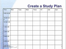 Chisholm Study Plan Presentation 1