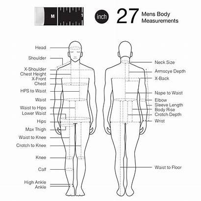 Tape Measurements Sewing Measurement Measure Chart Fashionary
