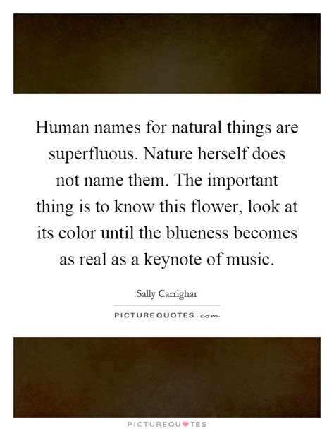 Human Names For Natural Things Are Superfluous Nature. Nature Quotes Rime Of The Ancient Mariner. Bible Quotes Life. Tumblr Quotes Backgrounds. Girl Quotes Quotelicious. Quotes About Strength To Move On Tumblr. Song Quotes In Hindi. Famous Quotes Lord Of The Rings. Faith Quotes New Testament