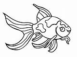 Goldfish Coloring Pages Fish Printable Realistic Getcoloringpages Bowl sketch template