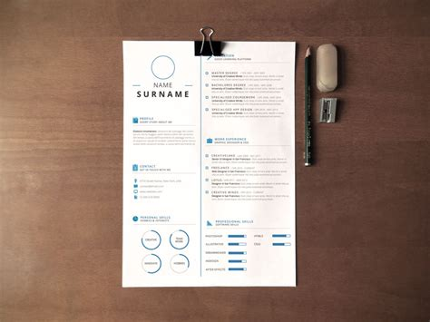 professional clean infographic resume
