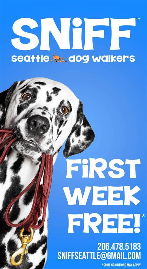 dog walker sniff walkers walking seattle orlando services winter week sniffseattle voted row