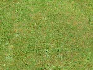 Grass Texture (50) - WujinSHike.com