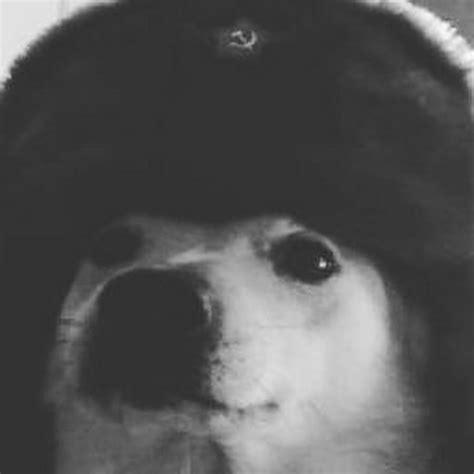 Comrade Doggo Youtube