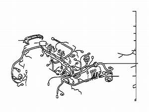 Toyota Corolla Connector  Wiring Harness  Wire  Engine