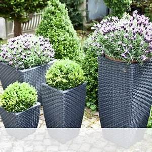 Hohe Pflanzkübel Für Rosen : vasen und k bel f r blumen und pflanzen westwing ~ Whattoseeinmadrid.com Haus und Dekorationen