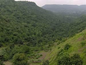 Vindhya Range - Wikipedia