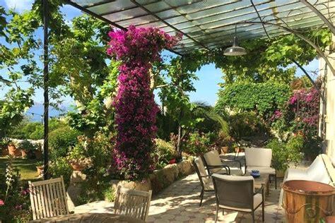 Anspruchslose Garten Pflanzen by Mediterraner Garten