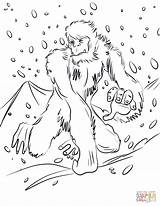 Yeti Coloring Pages Bigfoot Printable Running Unicorn Supercoloring Drawing Categories sketch template