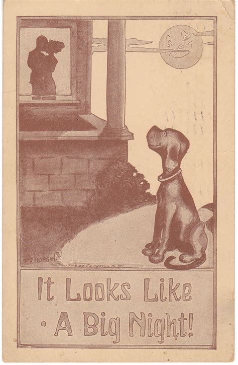 View From The Birdhouse Vintage Dog Postcards At